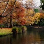 botanic gardens autumn
